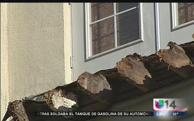 Berkeley evalúa reformar reglas de construcción tras colapso de balcón