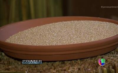 La quinoa, una súper comida llena de beneficios para la salud