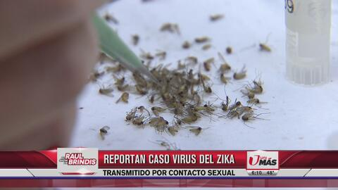 Dallas confirmó caso de Zika por transmisión sexual