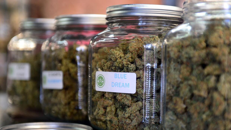 Marihuana Medicinal