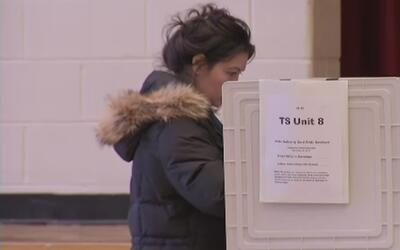 Información y recomendaciones para elecciones municipales del condado Lo...