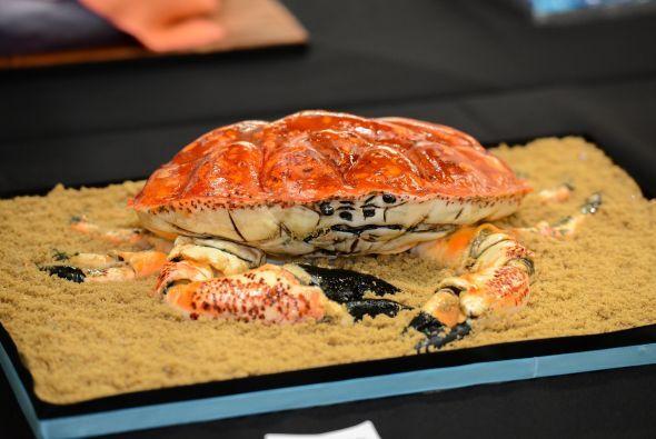Y si te gusta el mar, aquí un cangrejo que te atacará con sus pinzas.