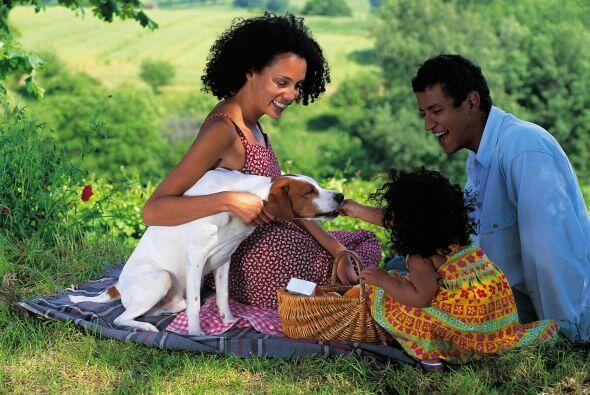 Alienta a tus niños a disfrutar de la naturaleza como tú lo hacías de pe...
