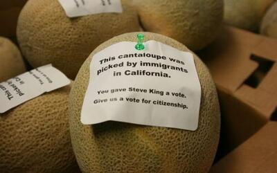 Niños como inédito premio, melones haciendo parte de una protesta, ataqu...