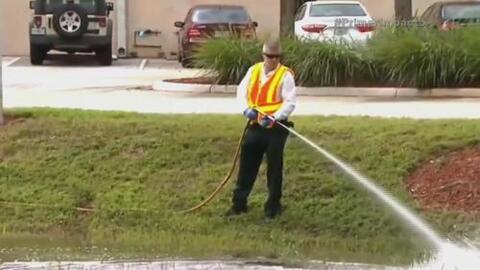 Cuatro casos del virus del Zika fueron reportados en Florida