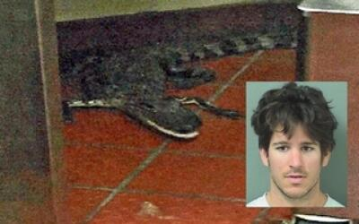 Joven lanzó caimán en restaurante