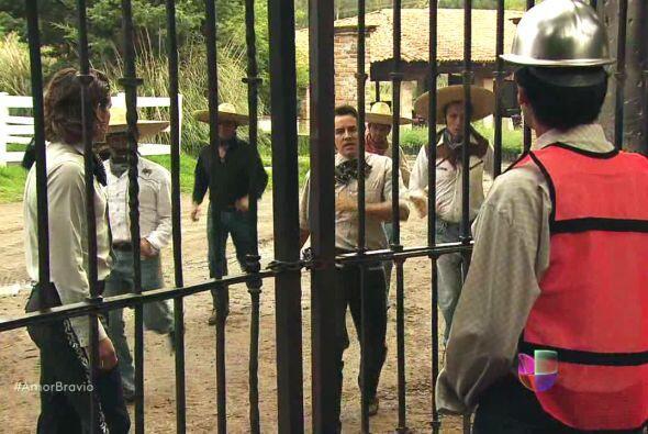 """Las maquinas demoledoras ya se encontraban a las puertas de """"La Malqueri..."""
