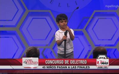 Niño se lleva la tarde en concurso de deletreo