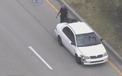 Una mujer murió atropellada cuando cruzaba una calle de Hallandale Beach...