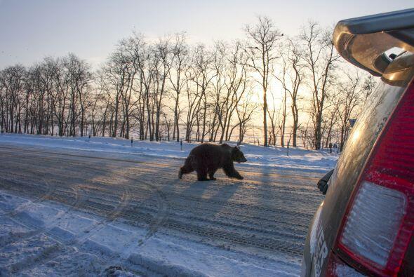 Sergey de 37 años, iba manejando por las calles de la ciudad de A...