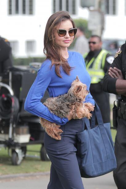 Miranda adora a su perrito y seguramente Frankie es la envidia de muchos.