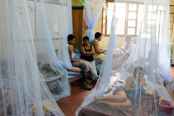 La jefa del Programa Nacional de Dengue del Ministerio de Salud, Roxana...