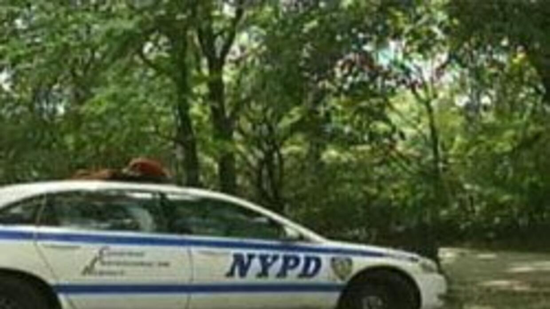 NYPD busca a un afroamericano quien asalto a mujer en el Parque Riversid...