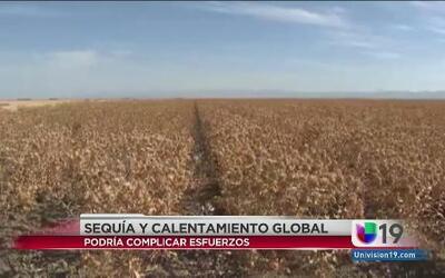 La sequía afecta al calentamiento global