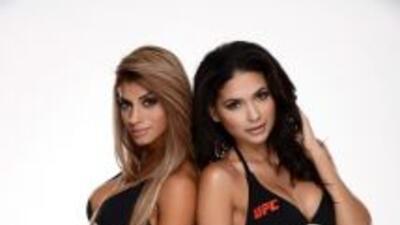 Las Octagon Girls para la UFC 180.