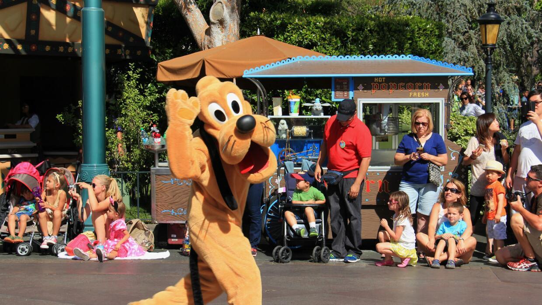 Perro de servicio se encuentra con Pluto