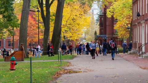 Where to pursue higher education is a difficult decision