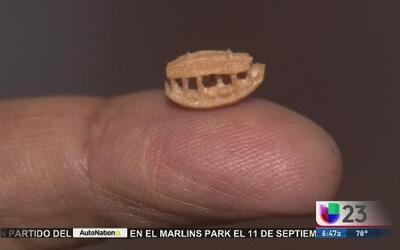 ¡Increíble! Esculturas del tamaño de un grano de arroz