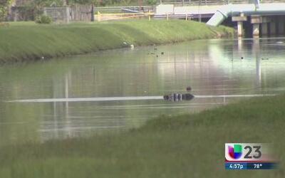 Encuentran cadáver flotando en un canal de agua