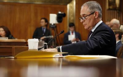 El nominado para dirigir la Agencia de Protección Ambiental contradice a...