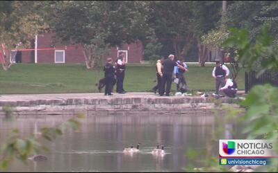 Vecinos de McKinley Park piden instalar cámaras de seguridad en el área