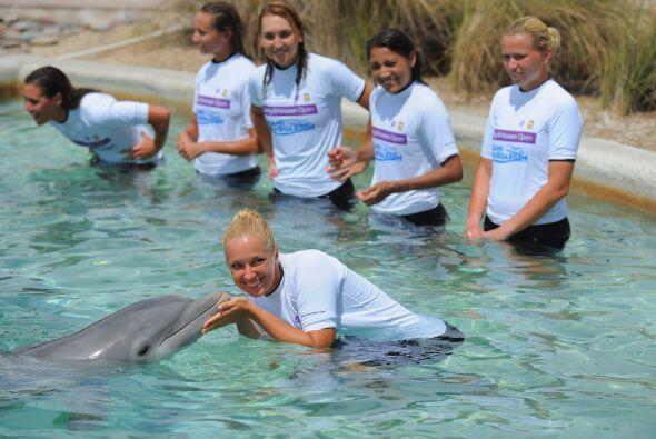 Y por todo eso, además de estos delfines, el Sony Ericsson Open d...