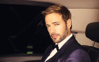 William Levy películas