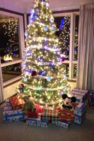 ¡Tus decoraciones de navidad!