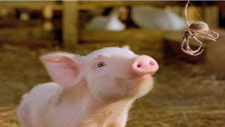 Wilbur y Charlotte trazarán un plan para evitar que se lo coman.