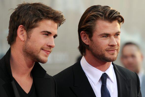 "¿O tal vez prefieres a su hermano, Chris ""Thor"" Hemswor..."