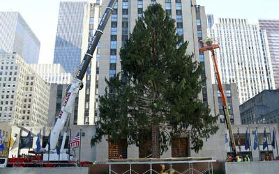 Turistas y citadinos ya están listo para encender el icónico árbol de Na...