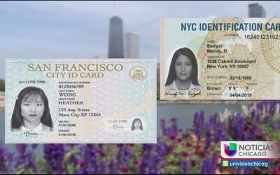 ¿Para qué serviría la nueva identificación municipal?