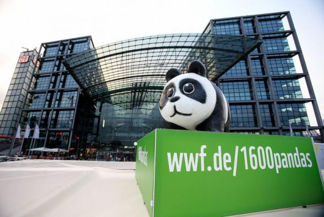 La campaña Pandas on Tour tiene su propia página web tal como se puede l...