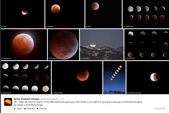 Disfruta de algunas de las imágenes del eclipse lunar del 15 de abril co...