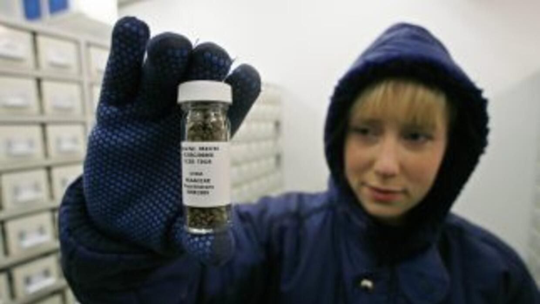 El el proyecto paticipan científicos de 23 países de América, Asia y Eur...