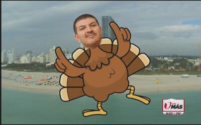 Las aventuras del Turky en Miami
