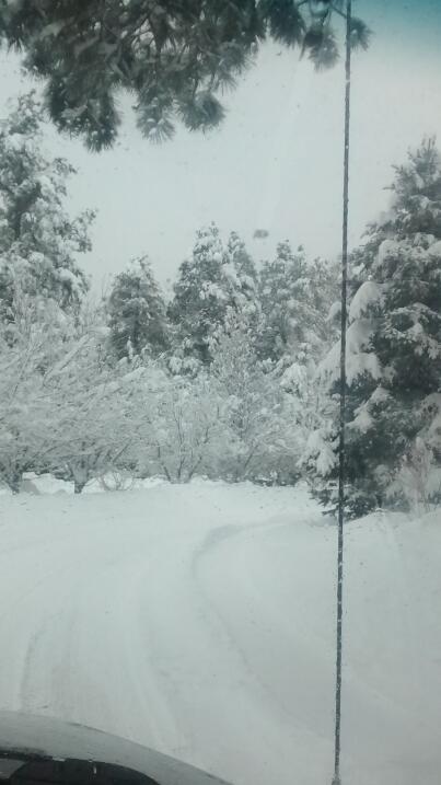 Flagstaff convertido en un paraíso invernal