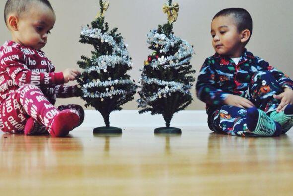 Noah y Eduardo frente a su dos arbolitos.