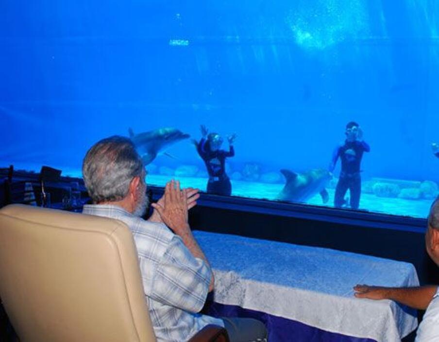 El líder cubano presenció el espectáculo de delfines.