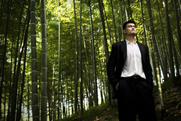 A pesar del oscuro pasado de sus padres, Yao probó suerte en el w...