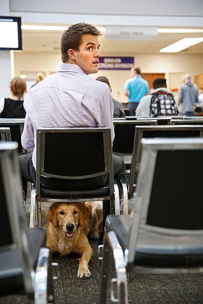 """Danny Hatfield de Denver, Colorado, acudió a votar en compañía de """"Lucy""""..."""