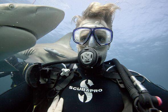 Por otro lado, los tiburones sólo matan alrededor de  5 personas...