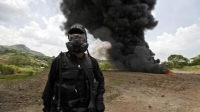 Las autoridades antidrogas panameñas desarticularon una organización int...