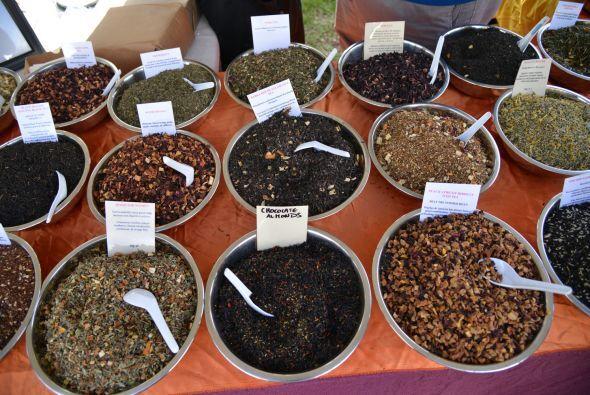 Raúl de Molina te muestra la variedad de chocolates y cómo es que del fr...