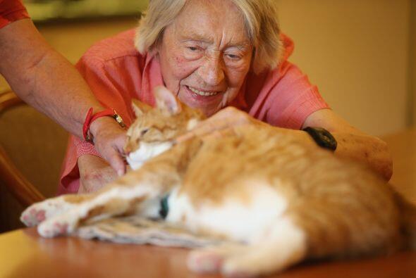 Edith Ehninger de 95 que sufre demencia, le gusta platicar con Mogli cad...