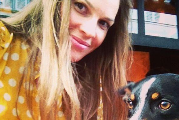 Hilary Swank y Karoo   El amor que Hilary le tienen a los perros es tan...