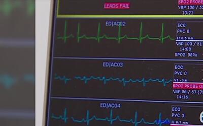 Proteja su corazón y evite las enfermedades cardiovasculares