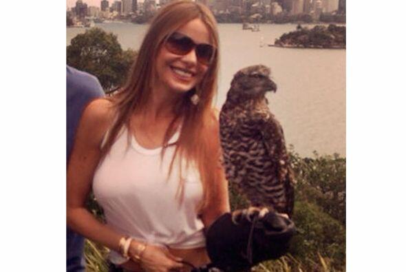 Sofía es una aventurera y se atrevió a sostener un águila. Mira aquí los...