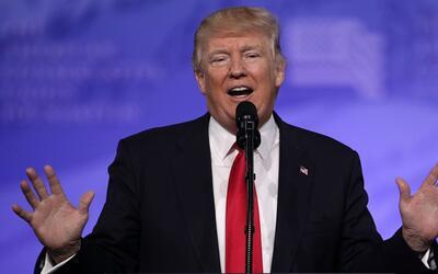 """Trump: """"ICE está buscando a los criminales y mandándolos al infierno, fu..."""
