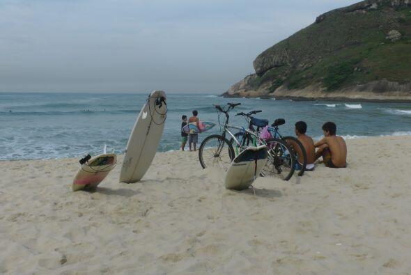 Durante su recorrido por la playa se encontró con este divertido grupo d...
